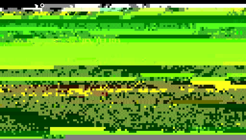 2015budokan_site