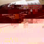 japan_tour_poll
