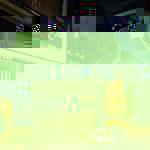 20161111kyoto015