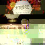 20161111kyoto072